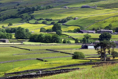 drystone: Traditional dry-stone walls in the farmland of the Yorkshire Dales in north east England  Stock Photo