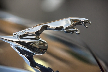 Jaguar is a British luxury and sports car manufacturer, headquartered in Coventry, England  It is part of the Jaguar Land Rover business, a subsidiary of the Indian company Tata Motors  Editorial