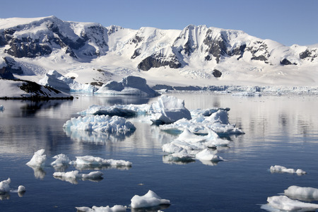 antarctic peninsula: Cuverville Bay on the Antarctic Peninsula in Antarctica Stock Photo