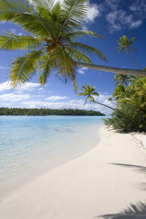 Tropical beach on a small island in Aitutaki Lagoon in the Cook Islands in the South Pacific