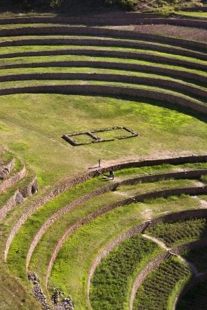 moray: Ancient Inca terraces at Moray near Urubamba in Peru