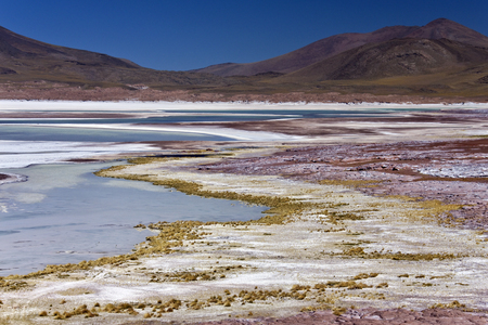 deposits: Salt deposits at Alues Calientes Lagoon in Atacama Desert in northern Chile