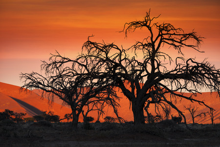 vlei: Sunset in the Namib Desert at Sossusvlei in Namibia Stock Photo