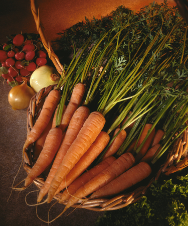 raddish: A basket of organically grown carrots with onions and raddish