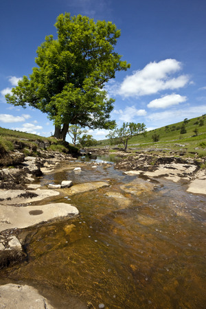 Yorkshire Dales: The River Wharf in Langstrothdale in the Yorkshire Dales National Park in northern England Stock Photo