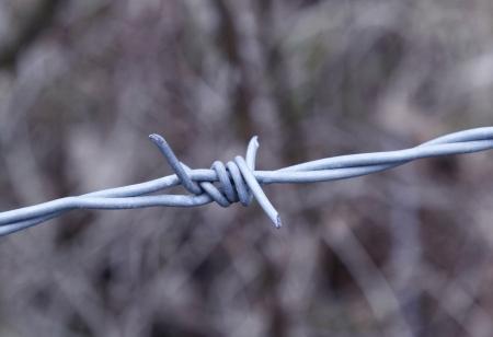 oppression: Barbed wire - oppression, injustice,