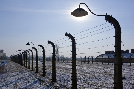 nazis: Auschwitz II-Birkenau, the extermination camp, where up to three million people were murdered by the Nazis  2 5 million gassed, and 500,000 from disease and starvation