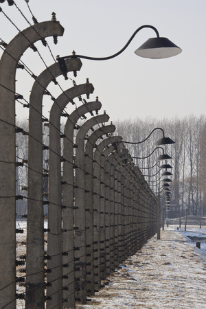 exterminate: Auschwitz II-Birkenau, the extermination camp, where up to three million people were murdered by the Nazis  2 5 million gassed, and 500,000 from disease and starvation