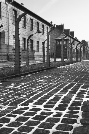 Auschwitz concentration camp, where up to three million people were murdered by the Nazis  2 5 million gassed, and 500,000 from disease and starvation