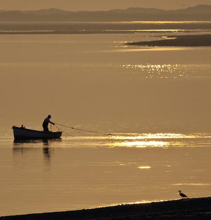A fisherman hauling in his nets at sunset on the coast near Caernarfon in Gwynedd in Wales