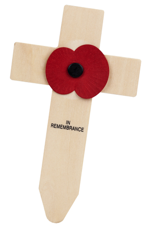 armistice: Isolated - Remembrance Day (also Poppy Day or Armistice Day) is a memorial day observed in Commonwealth countries since the end of World War One to remember members of the armed forces who have died in the line of duty. The remembrance poppy is especially