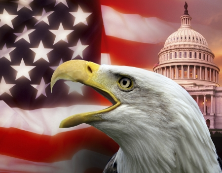 constitutional law: Symbols of The United States of America Stock Photo