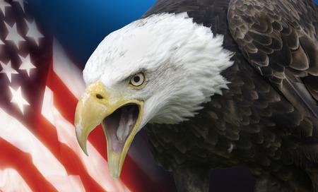 Symbols of The United States of America photo