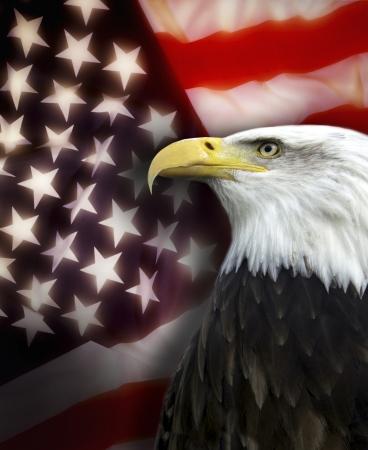 patriotic america: Patriotic symbols of the United States of America