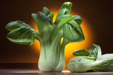 tapering: Bok Choy, Pak Chol or Pak Choi is a Chinese cabbage of a variety with smooth-edged tapering leaves