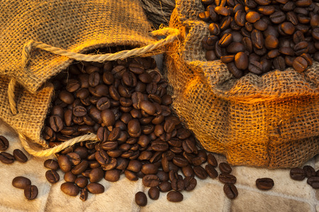 brewed: Coffee Beans - Coffee is a brewed beverage prepared from the roasted seeds of several species of an evergreen shrub of the genus Coffea  Stock Photo