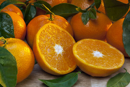 reticulata: Mandarin oranges are the fruit of a small citrus tree  Citrus reticulata   Mandarin oranges are usually eaten plain or in fruit salads  Stock Photo