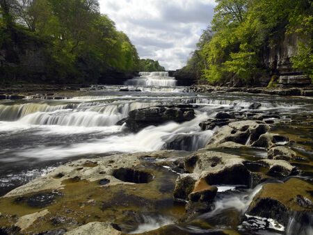 wensleydale: Aysgarth Falls en Wensleydale en el Yorkshire Dales en el noreste de Inglaterra