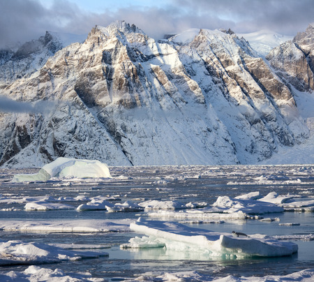 oscars: Hooded seal on sea ice and dramatic landscape of Davy Sound in King Oscars Fjord on the east coast of Greenland