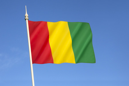 adapted: The national flag of Guinea - The colors of the flag were adapted from those of the Rassemblement Democratique Africain, the dominant movement at the time of independence. Adopted on 10th November 1958.