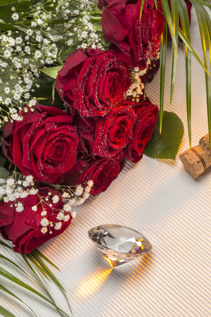 rosaceae: A red rose of the Genus Rosa, family Rosaceae. Red roses are often used as a symbol of love. Sent, often anonymously, on St Valentines Day, 14 February, to a person one loves or is attracted to. Stock Photo