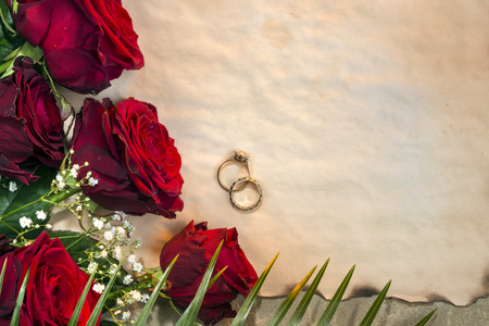 rosaceae: Red roses are often used as a symbol of love. Wedding Day and Wedding rings. Genus Rosa, family Rosaceae.  Space for text. Stock Photo