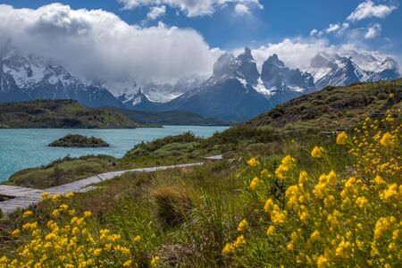 patagonian chile: Cordillera del Paine in Torres del Paine National Park in Patagonia in southern Chile.