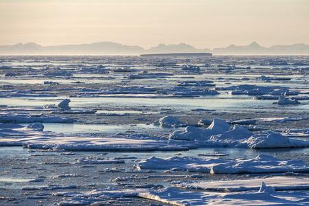 polar environment: Sea ice off the coast of eastern Greenland.