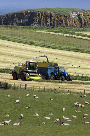 compacted: Agriculture - Farm workers collecting silage in the fields near the village of Ballycastle in County Antrim in Northern Ireland. Silage is grass fodder that is compacted and stored in airtight conditions, typically in a silo, without first being dried, to