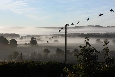 イギリスのノース ・ ヨークシャー田舎の早朝の霧。