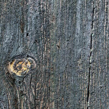 질감 - 나무로되는 문 - 배경에 페인트 껍질 스톡 콘텐츠