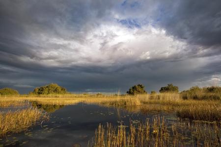 Dramatic sky in the Okavango Delta in Botswana