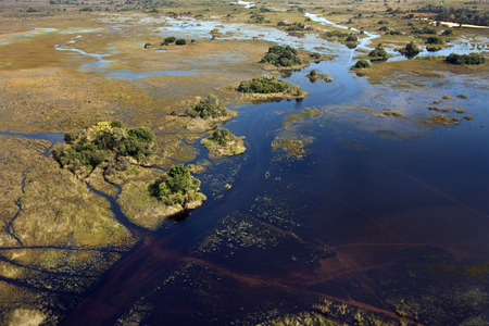 Aerial view of a small part of the Okavango Delta in Botswana