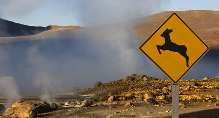 Geo-thermal steam vents at El Tatio Geyser Field in northern Chile. Stock Photo