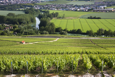 Vineyards and the River Marne at Hautvillers near Epernay (in background), south of Reims in northern France. Epernay is best known as the principal