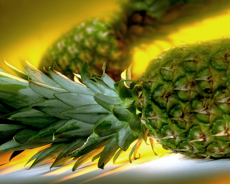 Pineapples - a large juicy tropical fruit consisting of aromatic edible yellow flesh surrounded by a tough segmented skin and topped with a tuft of stiff leaves.
