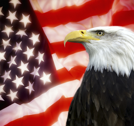 Patriotic Symbol Showing The American Flag With A Bald Eagle Stock