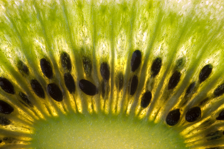Close up of the seeds in a slice of Kiwi Fruit (Chinese Gooseberry).