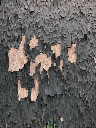 Background - Peeling paint on an old wooden door