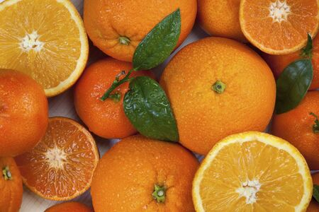 Selection of Manderins and Oranges