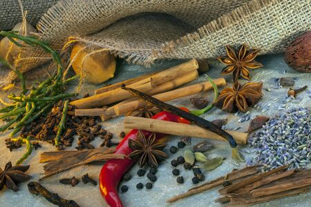 A selection of herbs and spices used in cooking Stockfoto