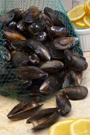Fresh mussels for cooking to make Moules Marinieres