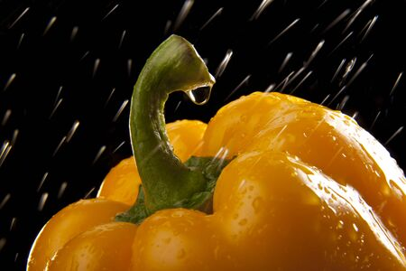 Water droplet on a yellow capsicum (or pepper in the US, Canada, United Kingdom and Ireland)