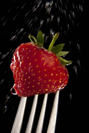 Washing a fresh Strawberry on a fork Stockfoto