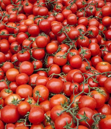 A large crop of tomatoes on a market stall in southern Spain. Stockfoto