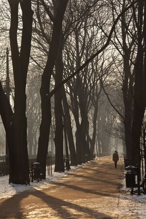 Walking in winter in the Planty, the largest city park in Krakow, Poland. It encircles the Stare Miasto (Old Town), and is where the medieval city walls used to stand until the early 19th century.