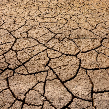 Dry, cracked earth in a dried up salt pan in Etosha National Park in Namibia, Africa. Stockfoto