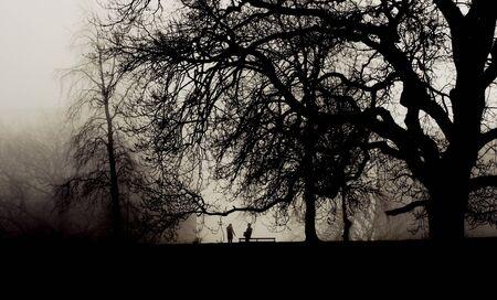 Due persone si incontrano in un parco nebbioso Archivio Fotografico