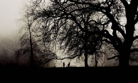 Two people meet in a foggy park