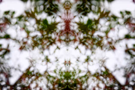 bleached: Desaturated red, green and white kaleidoscope pattern
